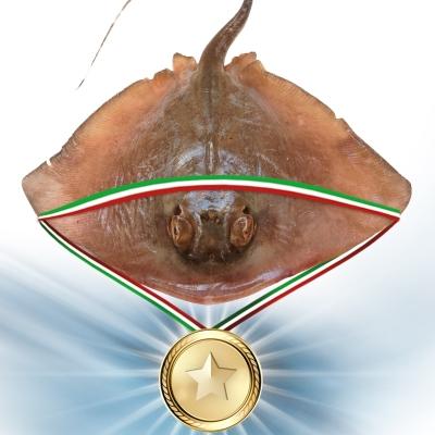 Pescheriapescevivo-19-29