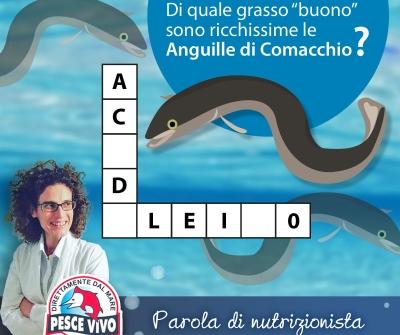 La nutrizionista consiglia: Anguille di Comacchio