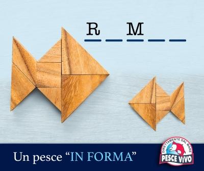 """Un pesce """"in forma"""": il rombo!"""