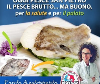 Pesce San Pietro… brutto, ma buono!