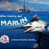 Alla ricerca del Marlin