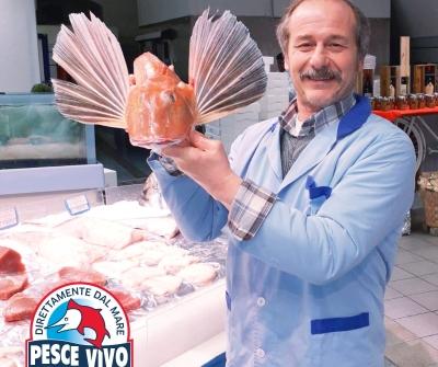 Rientro light: gallinella di mare dalla Sardegna