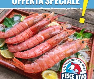 Offerta speciale: gamberoni argentini