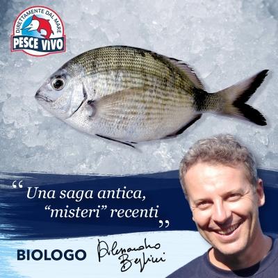 post-biologo-sarago