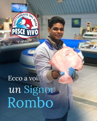 post-rombo-