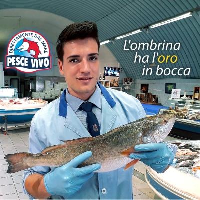 """L'ombrina boccadoro """"ha l'oro in bocca"""""""