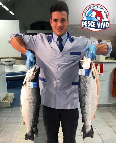 Oggi pesca grossa: salmoni scozzesi