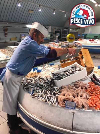 Pescheria Pesce Vivo la migliore di Milano
