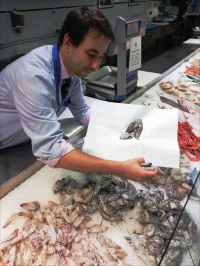 Seppie e Calamari di Settembre