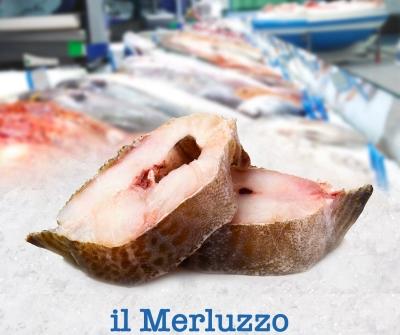 Merluzzo Gabilo? Frescamente disponibile presso la nostra pescheria