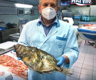 Il pesce San Pietro!