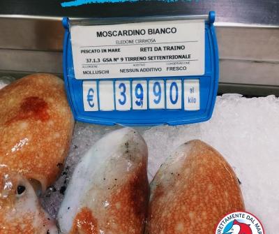 La freschezza del miglior pescato italiano pronta da servire in tavola