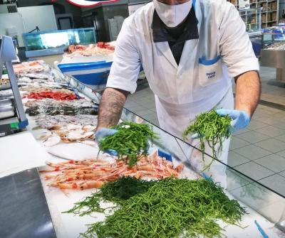 Salicornia: l'incrocio tra l'asparago e il pesce