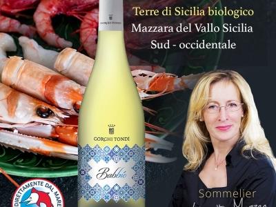 Babbiò IGT Terre di Sicilia biologico