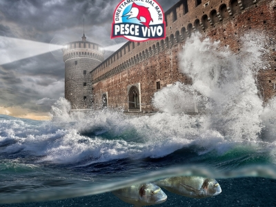 Mare a Milano – Castello Sforzesco
