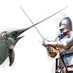 spezziamo una lancia in favore del pesce spada