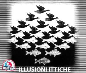 illusioni ittiche escher